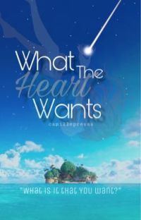 What The Heart Wants || Sora cover