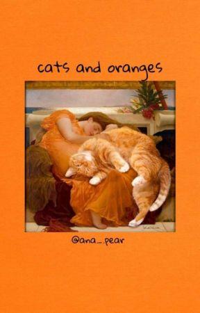 ⊰ cats and oranges ⊱ by yakaruye