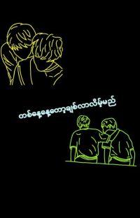 တစ္ေန့ေန့ေတာ့ခ်စ္လာလိမ့္မည္(တစ်နေ့နေ့တော့ချစ်လာလိမ့်မည်) cover
