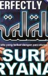 Perfectly Halal! cover