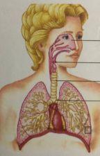 Berikut ini cara menyembuhkan bronkitis dengan aman dan tanpa efek samping by wulannikefahira247