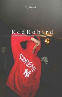 RedRobird | Tim Drake cover