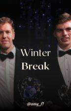 Winter Break (Sebastian Vettel / Max Verstappen) by amy_f1