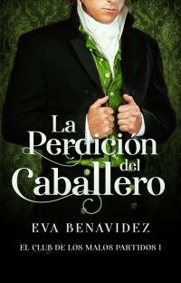 LA PERDICIÓN DEL CABALLERO*EL CLUB DE LOS MALOS PARTIDOS 1  cover