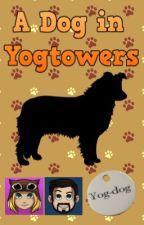 A Dog in Yogtowers (A Yogcast Fanfiction) by ScottishWolfSpirit