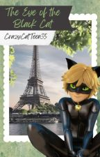 The Eye of the Black Cat (A Chat NoirxReader Fanfiction)-(Completed) by CrazyCatTeen35