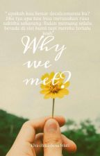 Why we met ? : Question by DeliaVachi