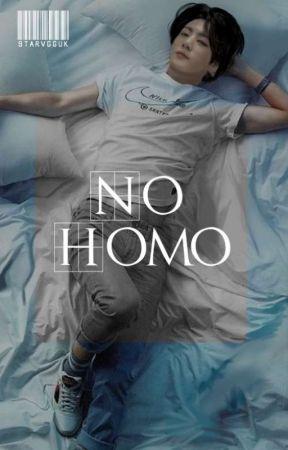 NO HOMO  by STARVGGUK