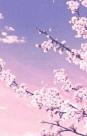 cherry tree by AdrienUzu