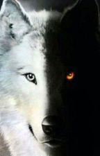 The Alpha Wolves by Polkadottedgiraffe11