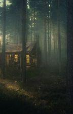 Одна ночь в лесу... с ним. by Masha_masha_love