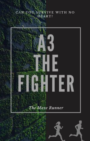 A3 The Fighter - a Maze Runner FF by QylaNaobi