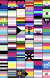 pride flag hand book cover