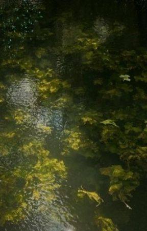 Mutterseelenallein by nyxtopia