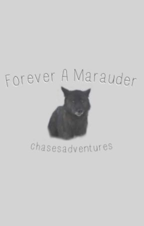 Forever A Marauder by chasesadventures
