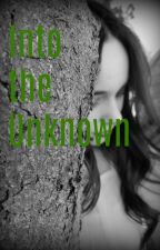 Into the Unknown - Arrow by livraek_