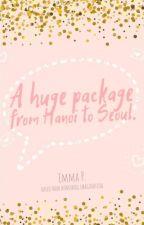 A huge package from Hanoi to Seoul. bởi jisungnokoibito