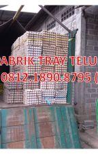 0812.1890.8795, Jual Tatakan Telur Puyuh Karton Bekas Bagus by pabriktraytelur01