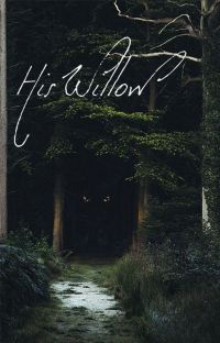 His Willow cover