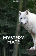 Mystery Mate by elksenova