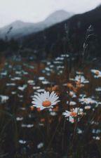 Літня ніч [ЗАВЕРШЕНО] від _Pikaboo_