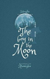 The Boy In The Moon cover