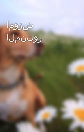 آموزش المنتور by webkima
