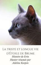La triste et longue vie d'Étoile de Brume by adeline1307