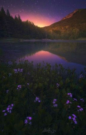 ¿Una familia normal? [Cancelada] by -_CrazyInHell_-