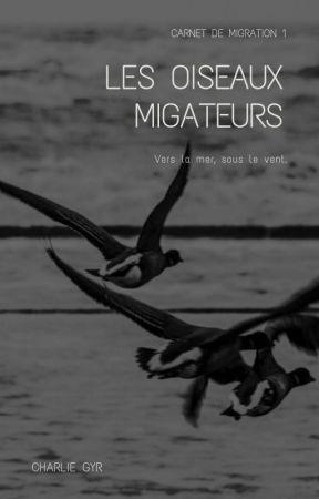 Les oiseaux migrateurs - [7 shots - BTS] by charliegyr