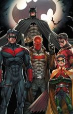 Life of the Batfamily|| Instagram AU by -DRAGOONLORD-