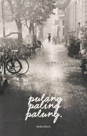 Pulang Paling Palung by hidrolisis