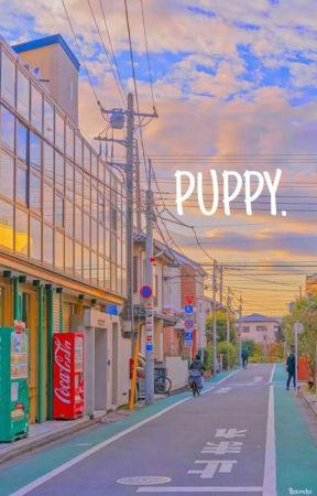 PUPPY.   SEUNGJIN by youwanttobangchan