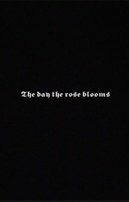 The day the rose blooms [chaelice] -shortfic