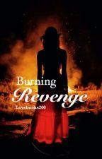 Burning Revenge by crehamanti