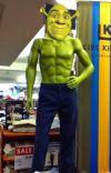Shrek x Reader  cover