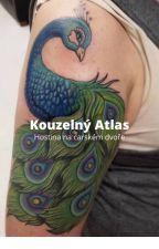 Kouzelný atlas - hostina na carském Rusku by R1y2s2y1