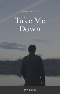 Take Me Down cover