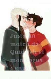 Juste un match de Quidditch et mon coeur s'envole - Drarry cover