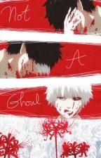 Not a Ghoul [Kaneki Ken x Reader] by tsubame-chi