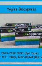 Biocypress Kota Lamandau by biocypressbisnis2