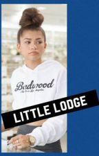 Little Lodge by TaliaLewis7