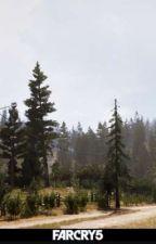 Far Cry 5  by Jedi-mabari