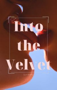 Into the Velvet cover