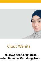 Call/WA 0823-2888-6745, Agen , Daleman Kerudung, Neurohat, Indramayu by ciputwanita