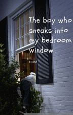 The boy who sneaks into my bedroom window-ETHMA by boobearsworld