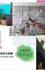 DISKON.Pot anggrek sabut kelapa, HP 0877-3299-5766, jual pot anggrek unik by produsenpotanggrek