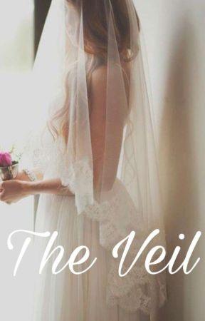 The Veil -A Modern Shirbert AU- by writerheart87