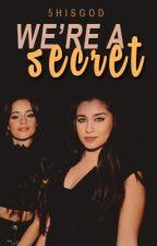We're A Secret (Camren) by 5hisgod