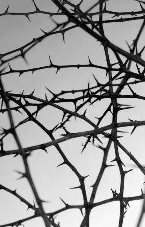 IRREPRESSIBLE OBSESSION  by Yndi4Ritche